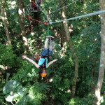 Zip-wiring in the rainforest